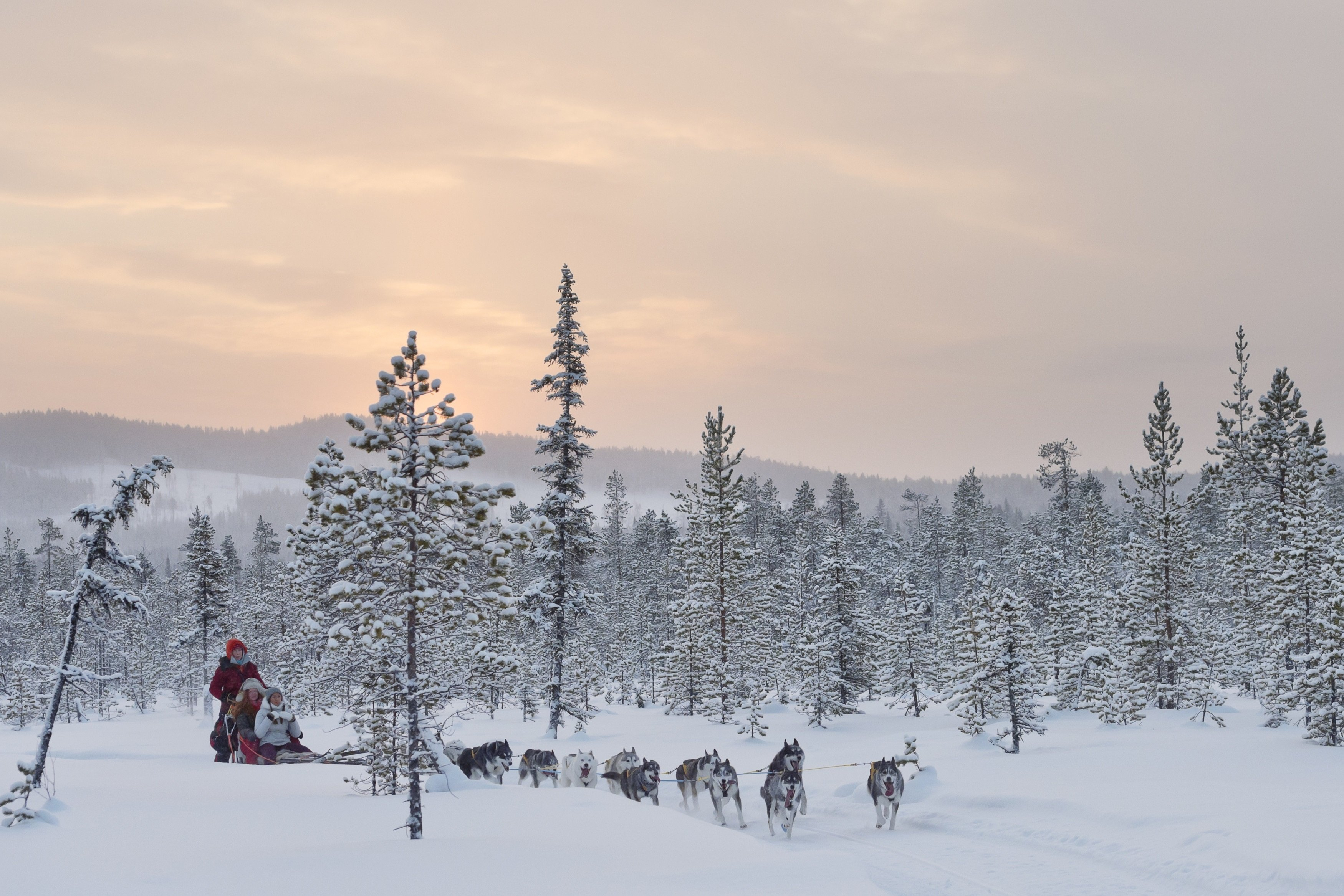 Ovation DMC - Swedish Lapland – Winter adventure at its best